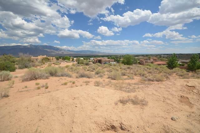 5804 Rio Lama Road NE, Rio Rancho, NM 87144 (MLS #995462) :: Campbell & Campbell Real Estate Services