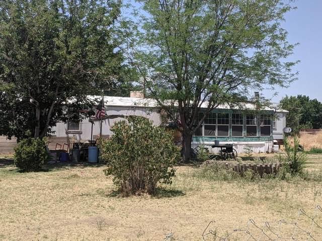 5 Phillips Drive, Los Lunas, NM 87031 (MLS #995491) :: Sandi Pressley Team