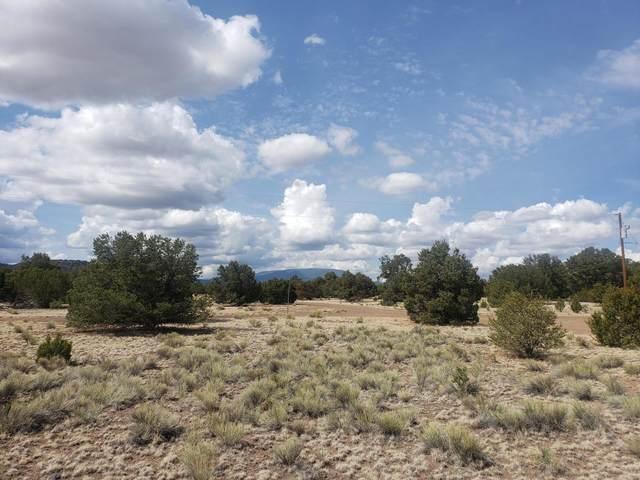 Coyote Drive, Quemado, NM 87829 (MLS #995573) :: Keller Williams Realty