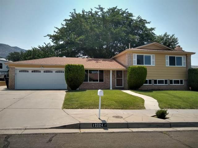 12024 Golden Gate Avenue NE, Albuquerque, NM 87111 (MLS #995582) :: Keller Williams Realty