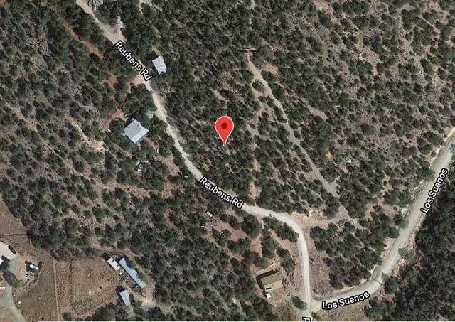 44 Reubens Road, Sandia Park, NM 87047 (MLS #995690) :: Berkshire Hathaway HomeServices Santa Fe Real Estate