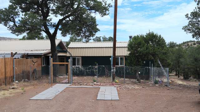 529 Frontier Trail, Datil, NM 87821 (MLS #995843) :: Campbell & Campbell Real Estate Services