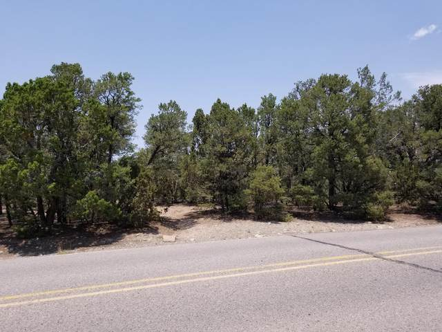 10 Dressage Drive, Tijeras, NM 87059 (MLS #995918) :: Sandi Pressley Team