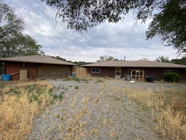 770 New Mexico 333, Tijeras, NM 87059 (MLS #995992) :: Sandi Pressley Team