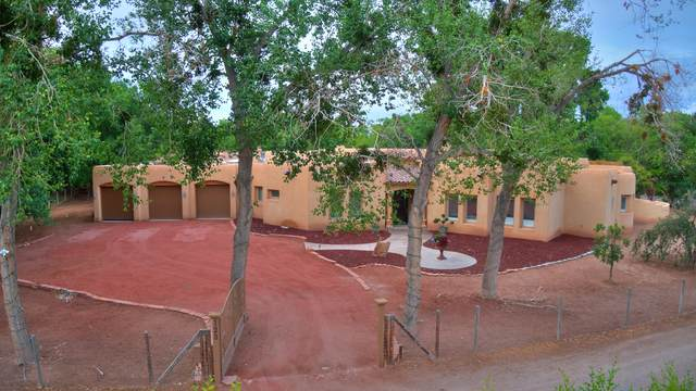 123 Sego Lane, Corrales, NM 87048 (MLS #996013) :: Campbell & Campbell Real Estate Services