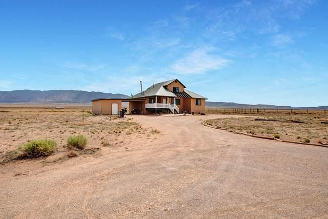 100 Mora Drive, Belen, NM 87002 (MLS #996052) :: Sandi Pressley Team