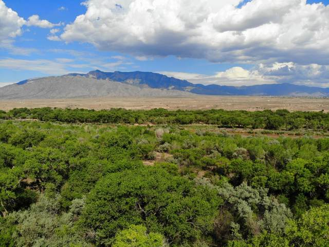 750 Perea Lane, Corrales, NM 87048 (MLS #996053) :: Campbell & Campbell Real Estate Services