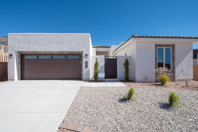 804 Harrier Hawk Drive NE, Albuquerque, NM 87122 (MLS #996098) :: Keller Williams Realty