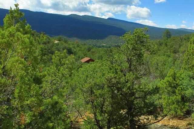 LOT 16 Vista Del Cielo, Cedar Crest, NM 87008 (MLS #996103) :: The Buchman Group