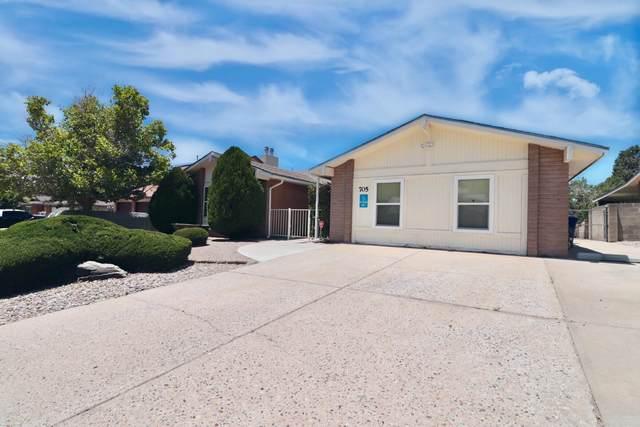 705 Monte Alto Drive NE, Albuquerque, NM 87123 (MLS #996273) :: Sandi Pressley Team
