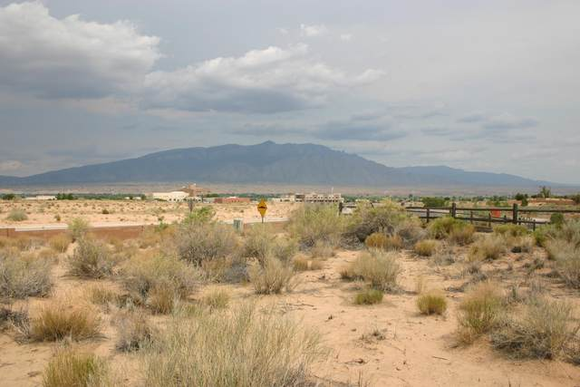 3201 Nativitas U20b114l14) Road NE, Rio Rancho, NM 87144 (MLS #996409) :: Keller Williams Realty