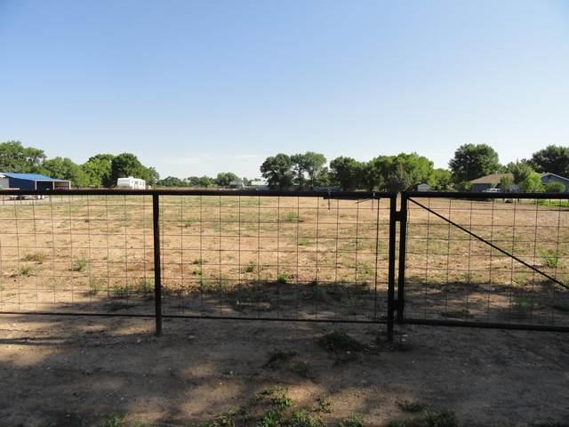 Marquez Road, Los Lunas, NM 87031 (MLS #996413) :: Campbell & Campbell Real Estate Services