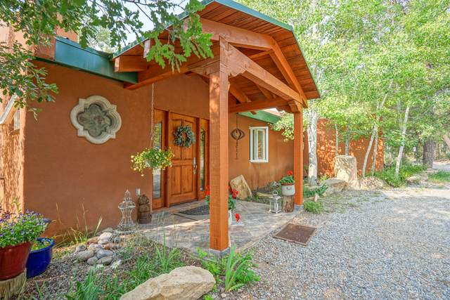 100 Forest Road 252, Tijeras, NM 87059 (MLS #996469) :: Campbell & Campbell Real Estate Services