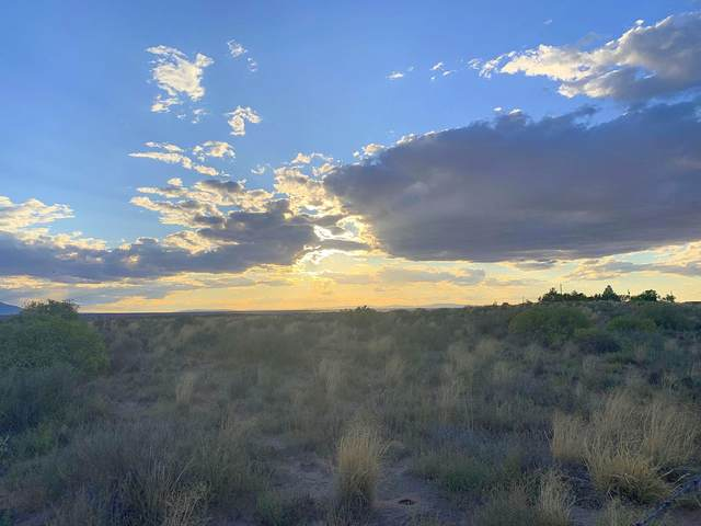 Lot 14 Highway 47, Rio Communities, NM 87002 (MLS #996493) :: Campbell & Campbell Real Estate Services