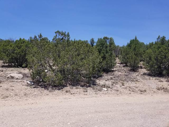 21 Hillside Drive, Edgewood, NM 87015 (MLS #996519) :: Campbell & Campbell Real Estate Services