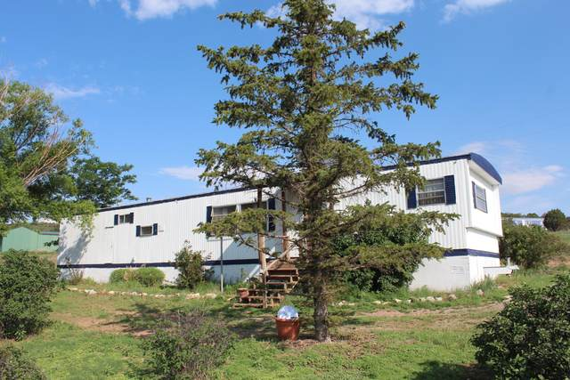 4 Glacier Trail, Edgewood, NM 87015 (MLS #996583) :: Berkshire Hathaway HomeServices Santa Fe Real Estate
