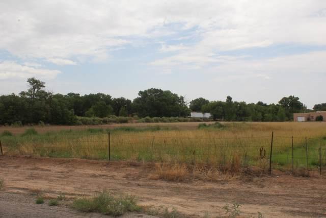 Orona Road, Los Lunas, NM 87031 (MLS #996638) :: Keller Williams Realty