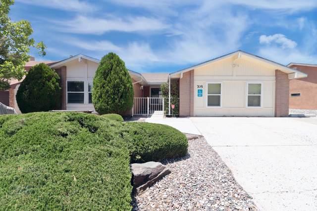 705 Monte Alto Drive NE, Albuquerque, NM 87123 (MLS #996646) :: Sandi Pressley Team
