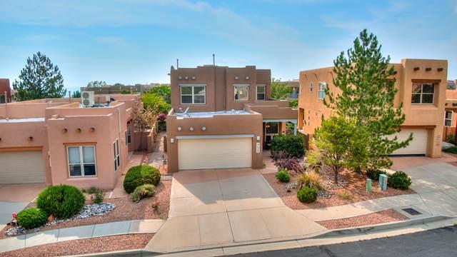6235 Goldfield Place NE, Albuquerque, NM 87111 (MLS #996653) :: Sandi Pressley Team