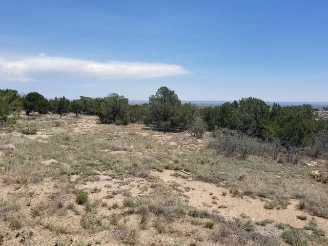 11 Barbara Lane, Edgewood, NM 87015 (MLS #996750) :: Campbell & Campbell Real Estate Services