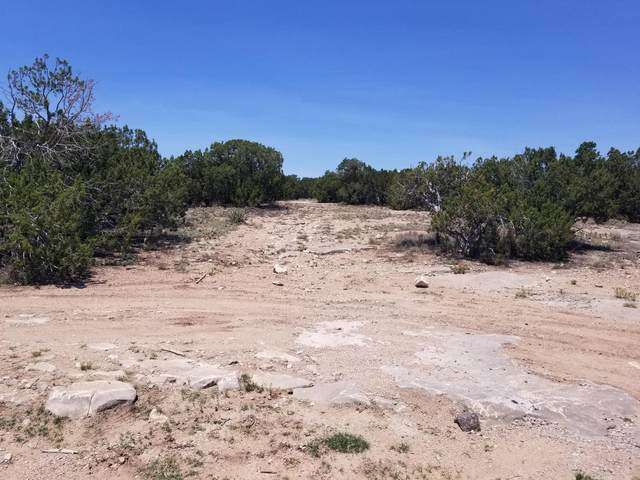 12 Barbara Lane, Edgewood, NM 87015 (MLS #996752) :: Campbell & Campbell Real Estate Services