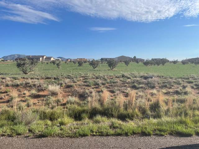 31 Halfmoon Road, Edgewood, NM 87015 (MLS #996772) :: Keller Williams Realty
