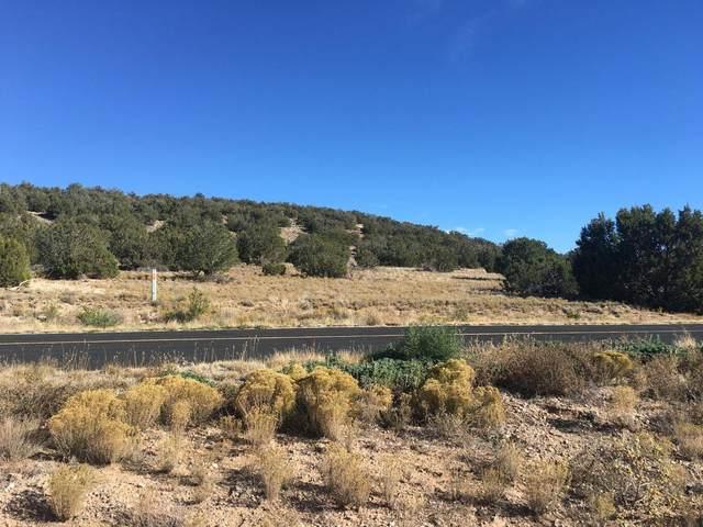 43 Camino Real, Sandia Park, NM 87047 (MLS #996815) :: Keller Williams Realty