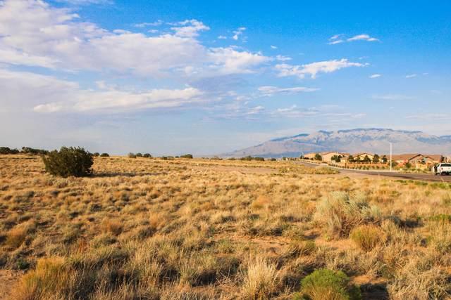 Rosa Parks L 14 B 11 U 16 NW, Albuquerque, NM 87120 (MLS #996840) :: Sandi Pressley Team