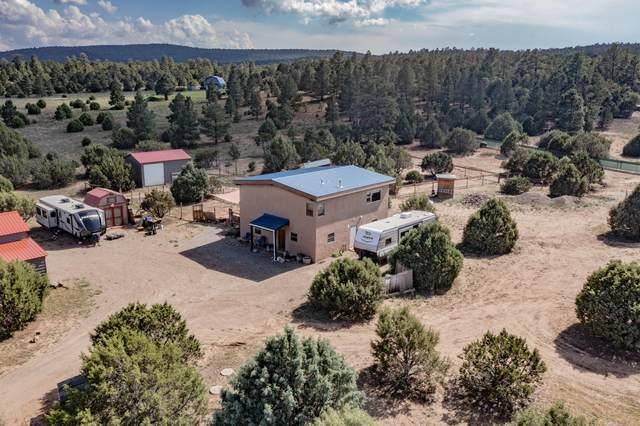 74 Upper Juan Tomas Road, Tijeras, NM 87059 (MLS #996844) :: Campbell & Campbell Real Estate Services