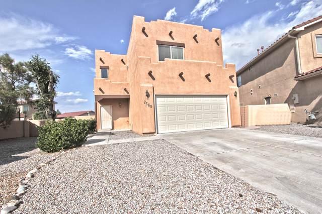 7568 Cricket Hill Drive NE, Albuquerque, NM 87113 (MLS #996878) :: Sandi Pressley Team