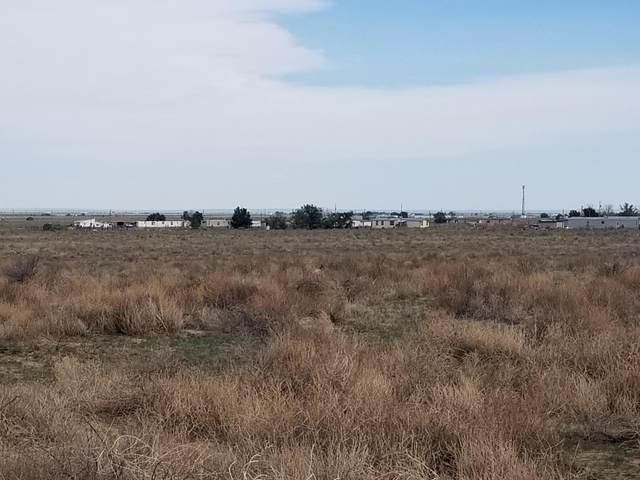 84 Golondrina Street, McIntosh, NM 87032 (MLS #996889) :: Berkshire Hathaway HomeServices Santa Fe Real Estate