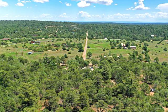 54 Nightingale Lane, Tijeras, NM 87059 (MLS #996916) :: Campbell & Campbell Real Estate Services