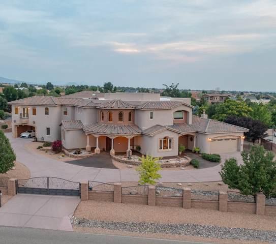 10000 Signal Avenue NE, Albuquerque, NM 87122 (MLS #996924) :: Sandi Pressley Team