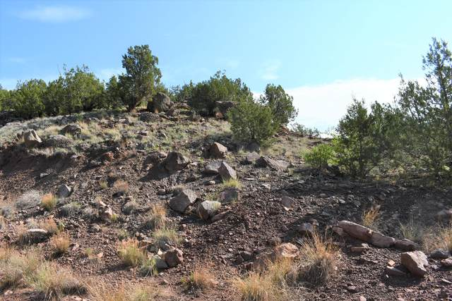 Tract A1 Lands Of Garcia And Mcfarland, Jemez Springs, NM 87025 (MLS #996925) :: The Buchman Group