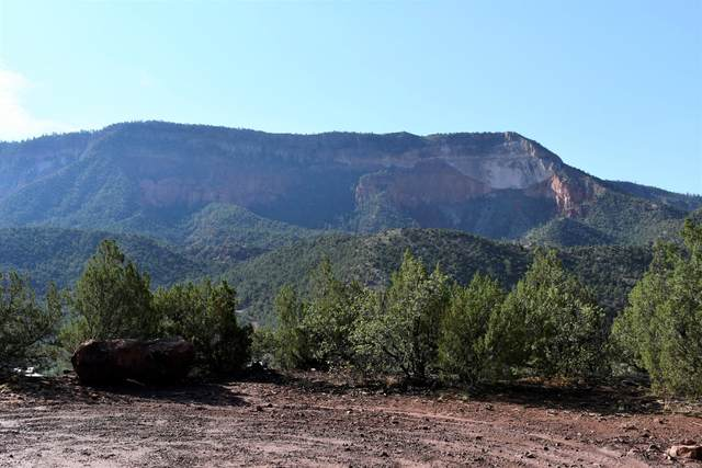 Tract B1 Lands Of Garcia And Mcfarland, Jemez Springs, NM 87025 (MLS #996934) :: The Buchman Group