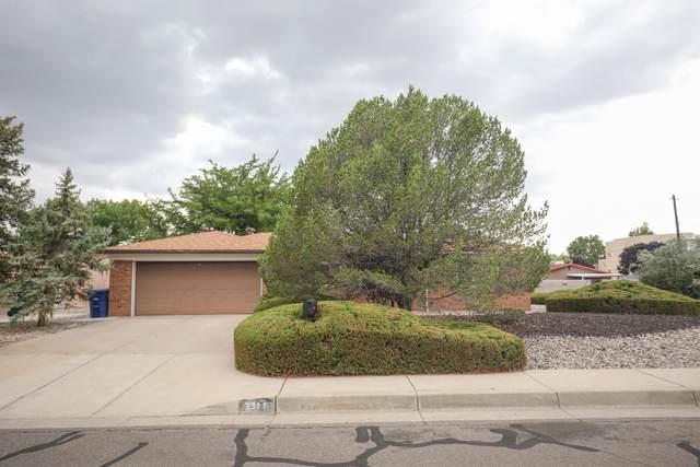 3911 Parsifal Street NE, Albuquerque, NM 87111 (MLS #996970) :: Sandi Pressley Team