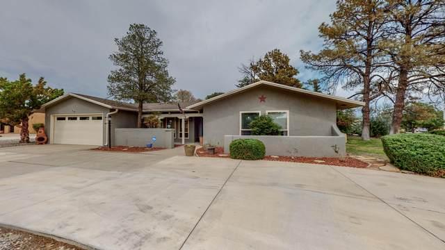 502 Ashberry Court SE, Rio Rancho, NM 87124 (MLS #996982) :: Sandi Pressley Team