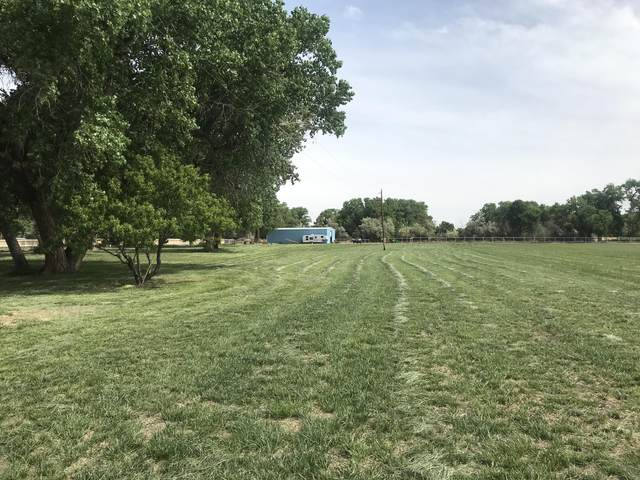 740 Shady Lane, Veguita, NM 87062 (MLS #996990) :: Sandi Pressley Team
