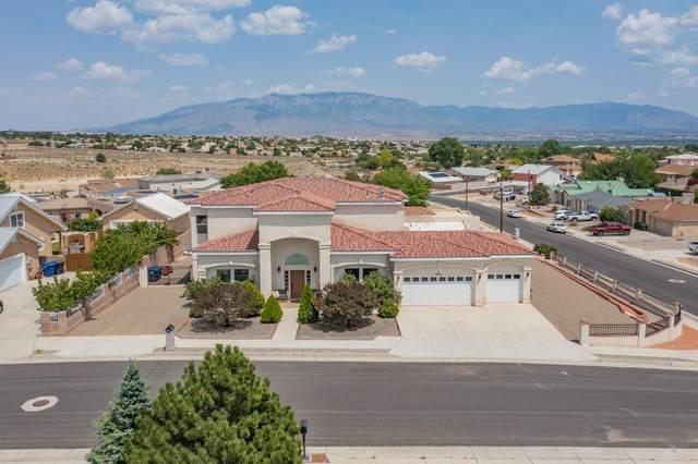 10800 Buckboard Street NW, Albuquerque, NM 87114 (MLS #997065) :: Sandi Pressley Team