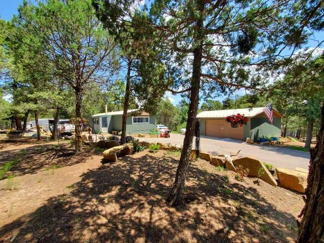29 Gonzales Road, Tijeras, NM 87059 (MLS #997067) :: Campbell & Campbell Real Estate Services