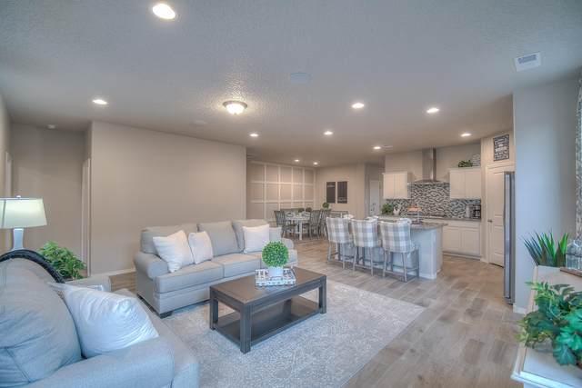 4457 Skyline Loop NE, Rio Rancho, NM 87144 (MLS #997110) :: Sandi Pressley Team