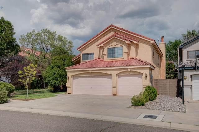 8432 Manuel Cia Place NE, Albuquerque, NM 87122 (MLS #997111) :: Sandi Pressley Team