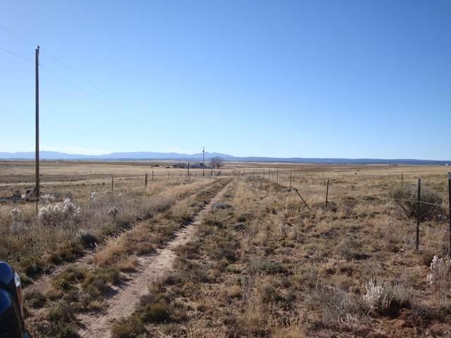 72 Roberts Road, McIntosh, NM 87032 (MLS #997130) :: Keller Williams Realty