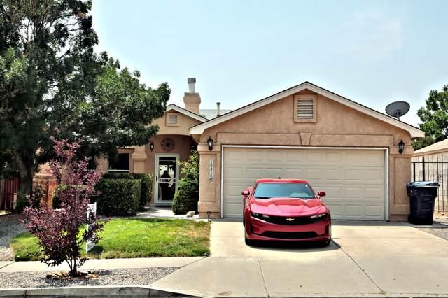 10216 Paso Fino Place SW, Albuquerque, NM 87121 (MLS #997148) :: Sandi Pressley Team