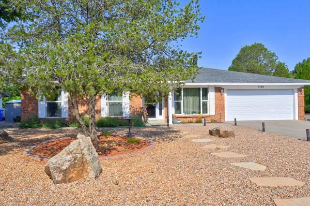 7105 Luella Anne Drive NE, Albuquerque, NM 87109 (MLS #997155) :: Sandi Pressley Team