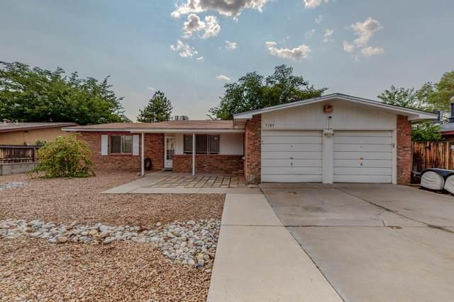 7105 Merle Drive NE, Albuquerque, NM 87109 (MLS #997165) :: Keller Williams Realty