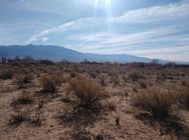 963 Camino Sin Pasada Road, Corrales, NM 87048 (MLS #997182) :: Campbell & Campbell Real Estate Services