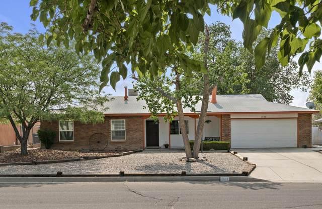 2656 Panorama Heights Drive SE, Rio Rancho, NM 87124 (MLS #997199) :: Sandi Pressley Team
