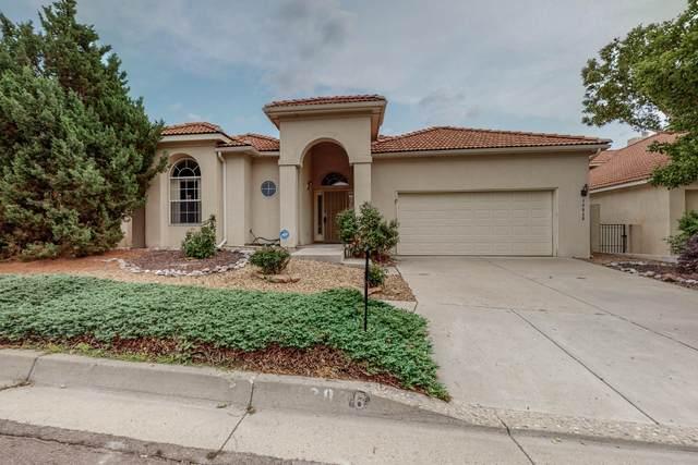 12036 Gazelle Place NE, Albuquerque, NM 87111 (MLS #997205) :: Sandi Pressley Team
