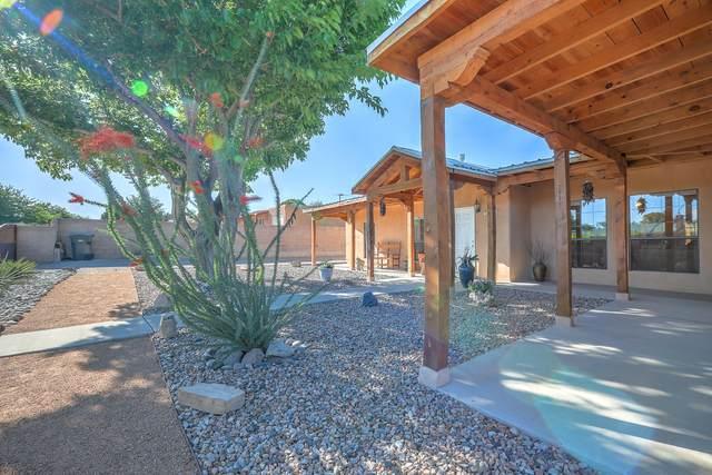 1232 Cielo Vista Del Norte NW, Corrales, NM 87048 (MLS #997218) :: Campbell & Campbell Real Estate Services